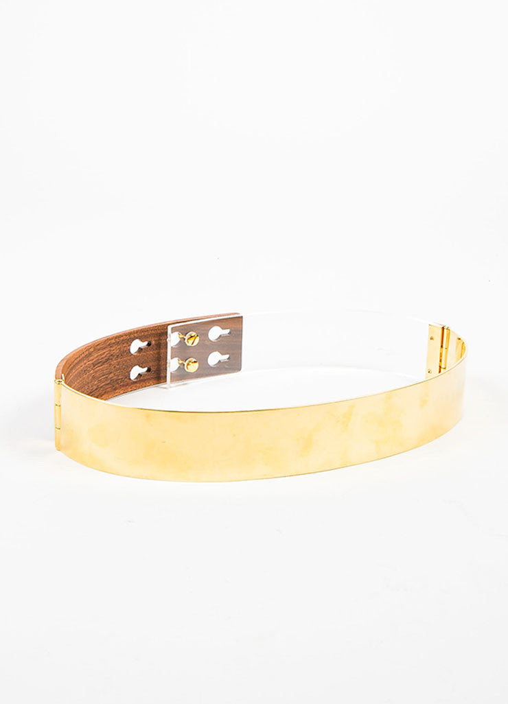 Fendi Gold Toned Metal, Brown Wood, and Clear Lucite Mixed Media Waist Belt Frontview