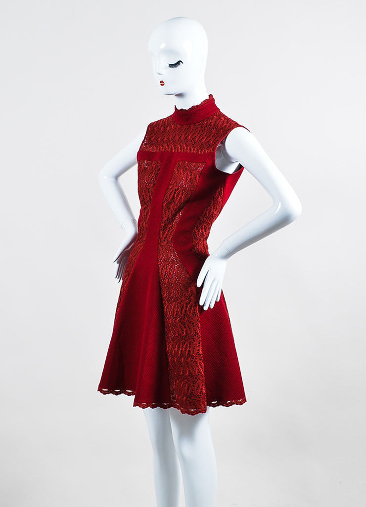 Burgundy Red Alexander McQueen Lace Paneled Fit and Flare Dress Sideview