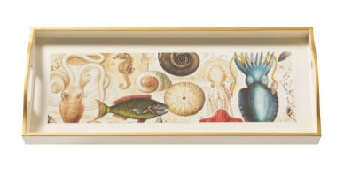 Ocean Life, Sandwich Cream Tray