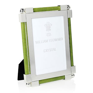 Shagreen Lime Green Frame 4x6