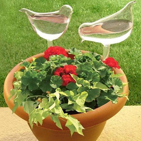 【Up to 50% OFF】Self-Watering Plant Glass Bulbs