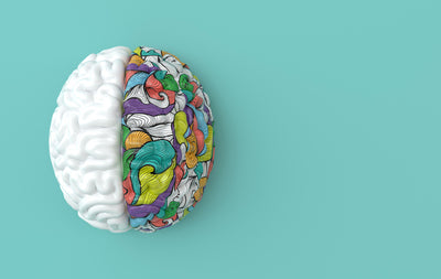 The Two Key Nutrients That Boost Brain Health