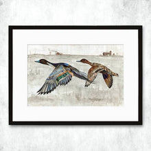 Load image into Gallery viewer, Dolan Geiman Signed Print Ducks (Pintail)