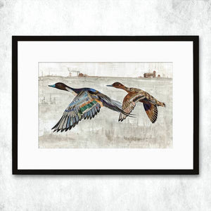 Dolan Geiman Signed Print Ducks (Pintail)