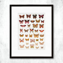 Load image into Gallery viewer, Dolan Geiman Signed Print Butterflies (Dawn)