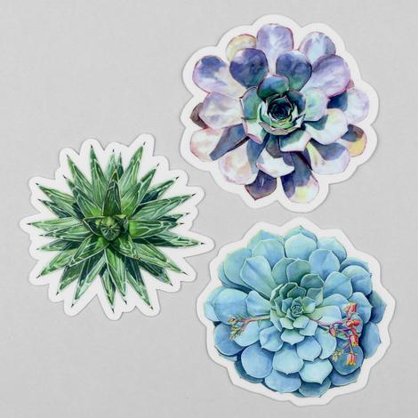 Succulent Sticker Set