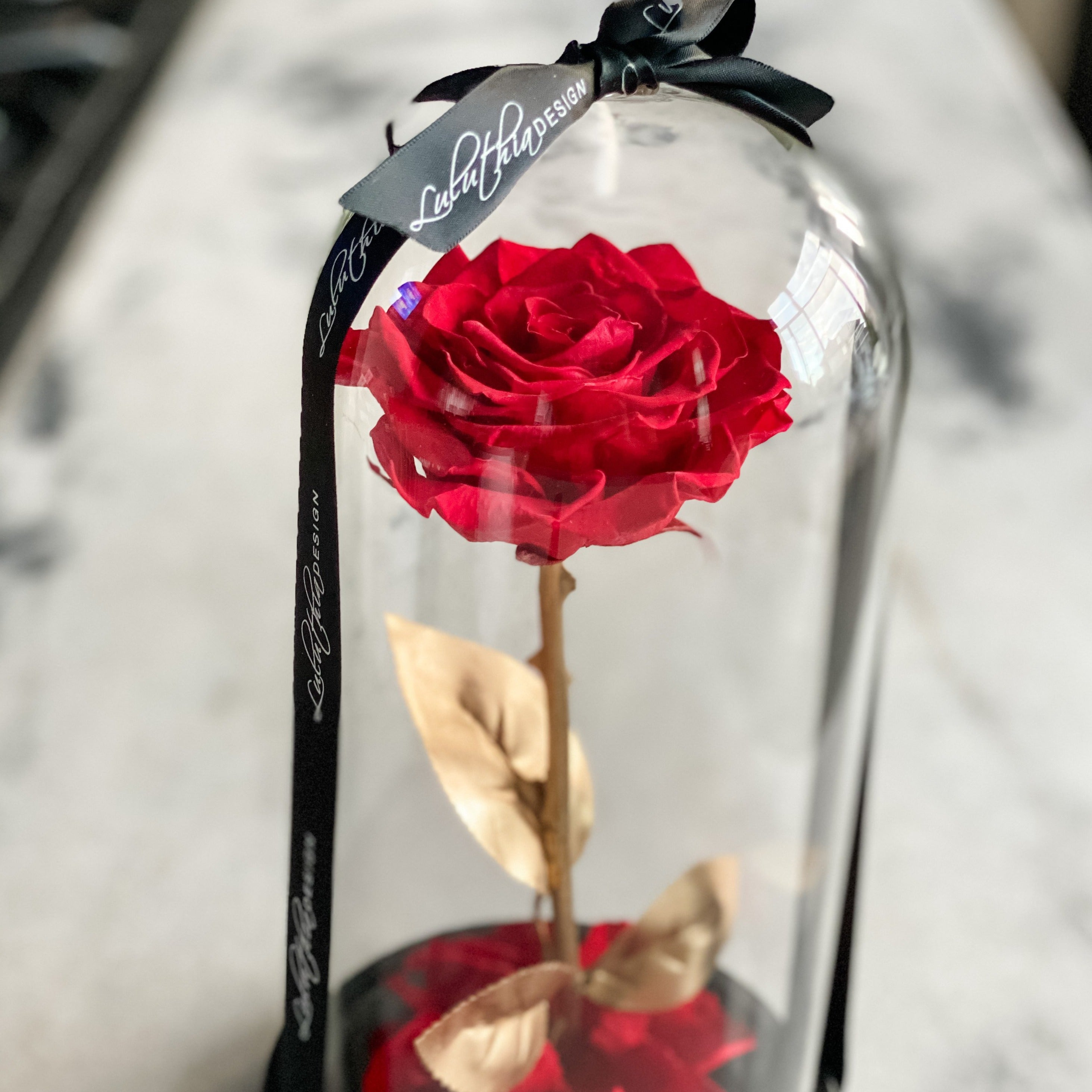 XL Eternal Rose in Glass Dome