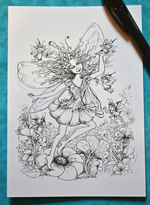 Fairy Collection Set 2