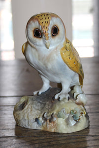 CROWN DERBY OWL  -  SKU765