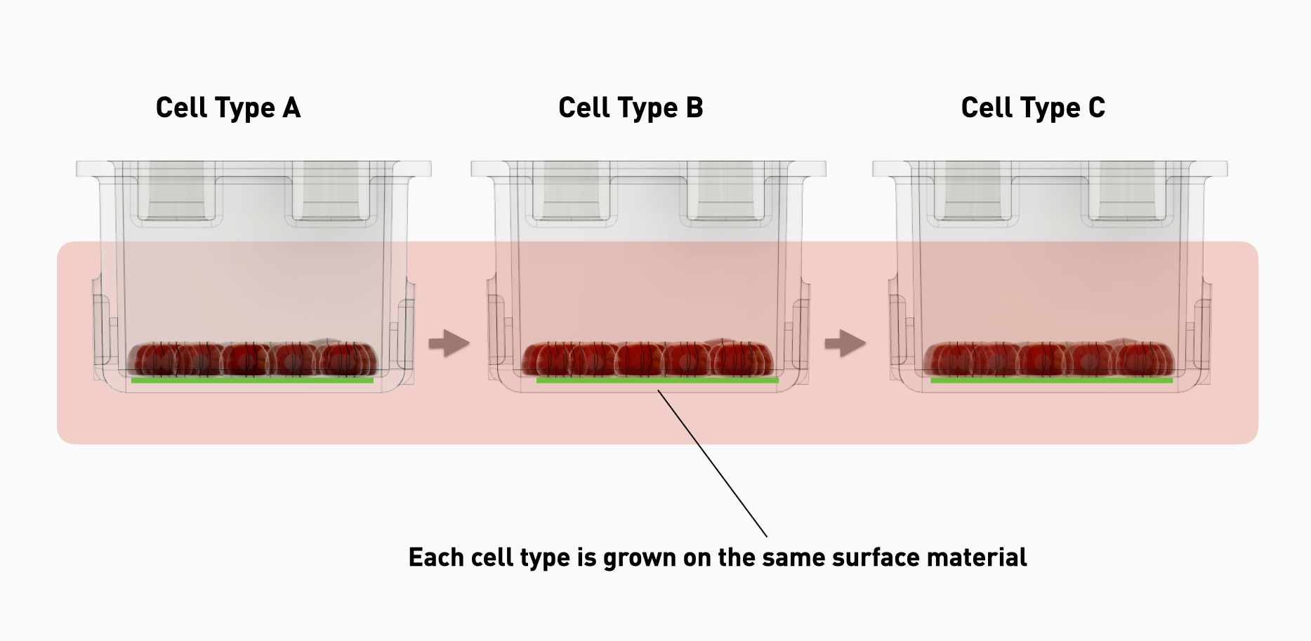 surface material in cellbloks circulatory blocks