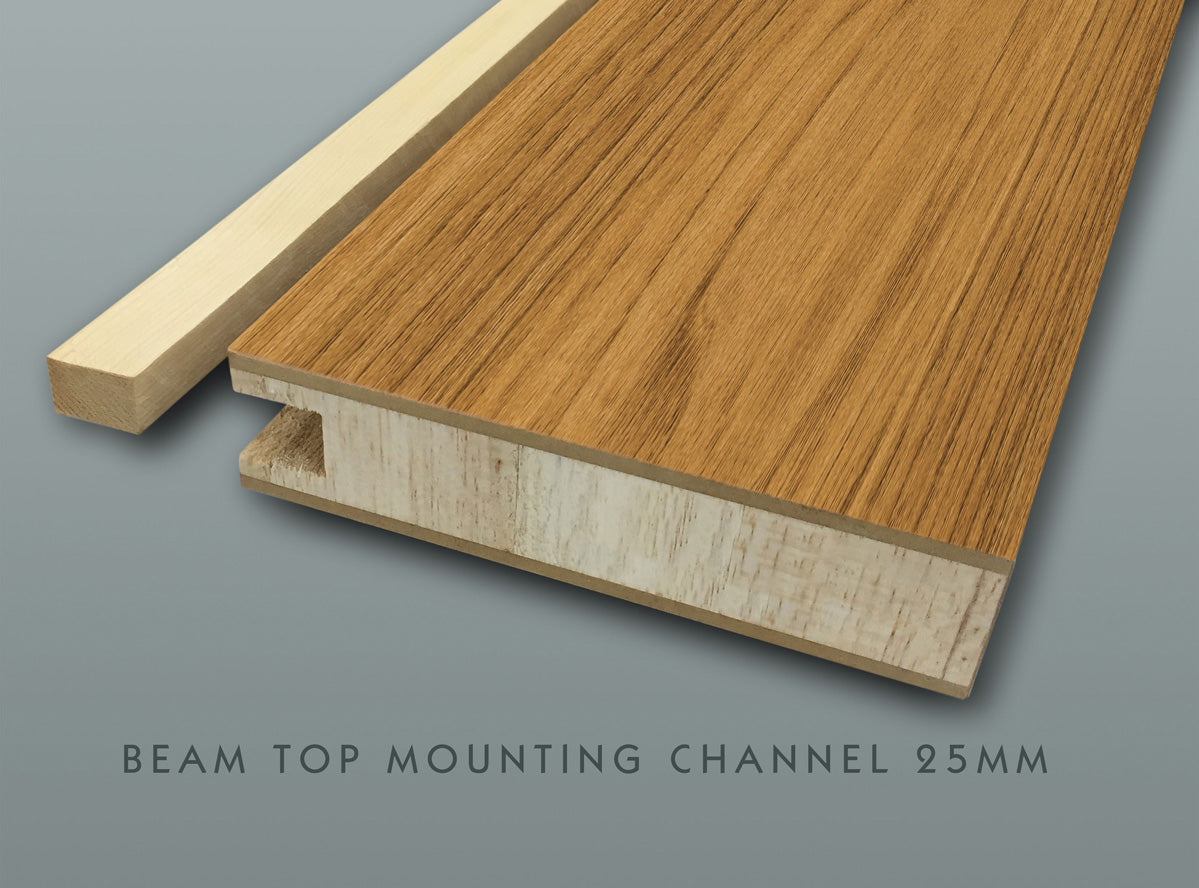 Beam Top Channel Mount