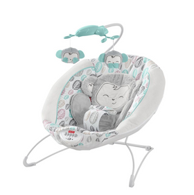 Deluxe Bouncer (Infant-20 lbs)