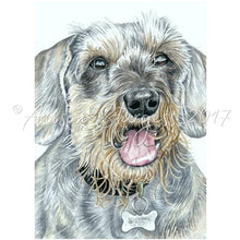Load image into Gallery viewer, Dachshund Print, Wire Haired Dachshund Watercolour