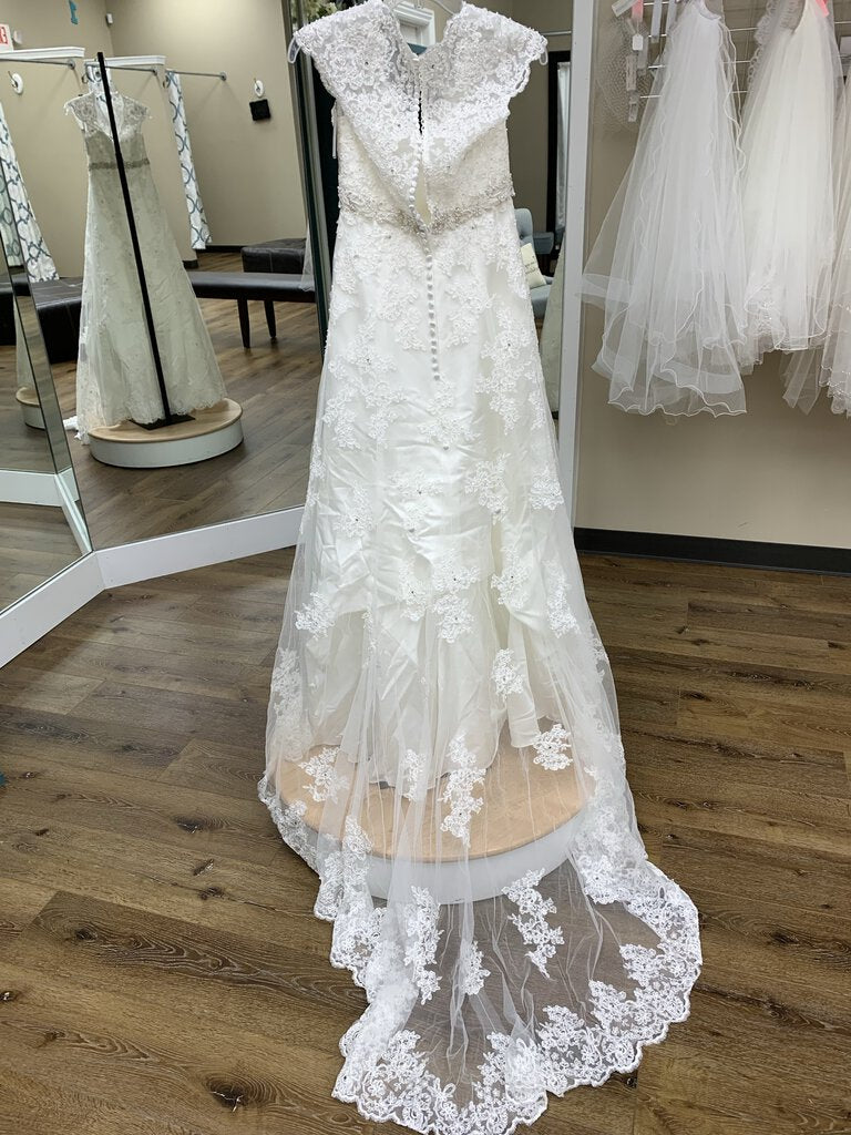 A-line with Cap Sleeves and Lace Overlay