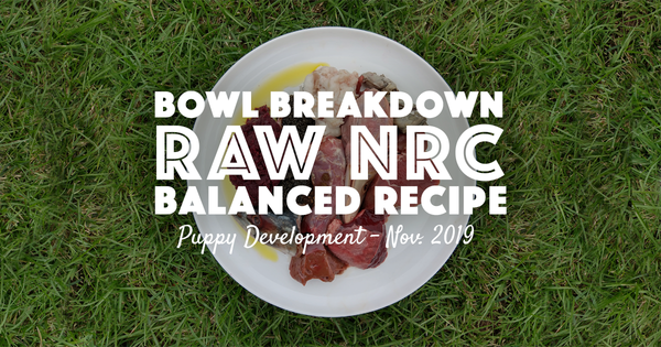 NRC Balanced Raw Puppy Recipe