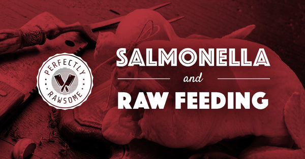 Salmonella & Raw Feeding