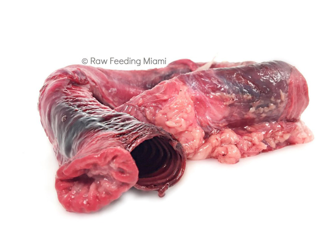 exotic-raw-pet-food-emu-trachea