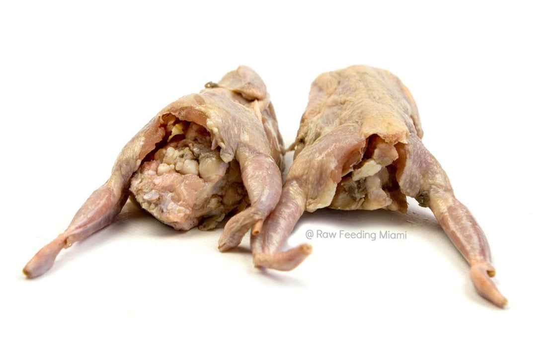 exotic-raw-pet-food-quail