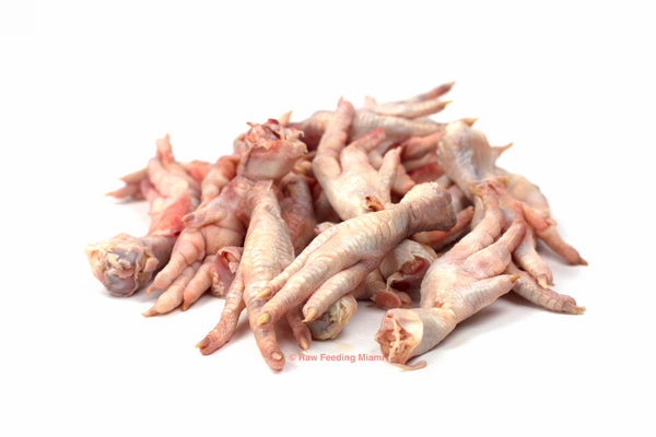 raw feeding miami, Chicken Feet