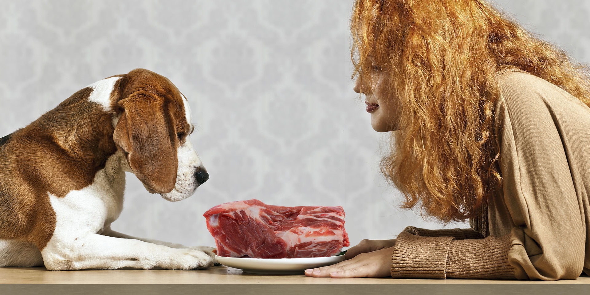 Raw Meat Food Supplier for Puppies, Dogs, & Cats