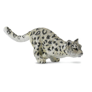 CO Snow Leopard Cub Running (M)