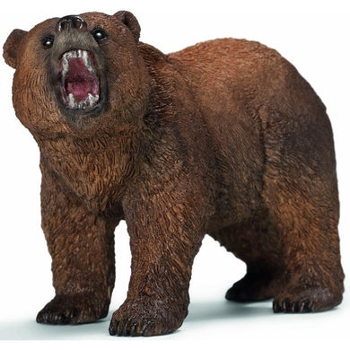 SC Grizzly Bear