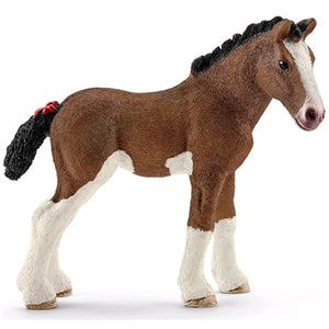 SC Clydesdale Foal
