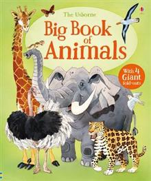 Big Book of Animals HB