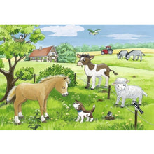 Load image into Gallery viewer, RB Baby Farm Animals 2x12pc