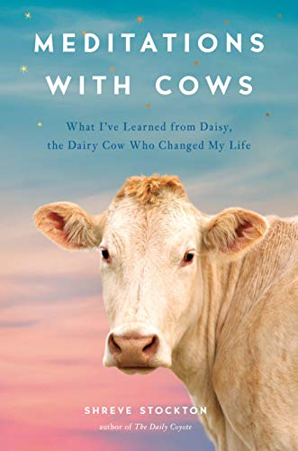 Meditations with Cows: What I've Learned from Daisy, the Dairy Cow Who Changed My Life