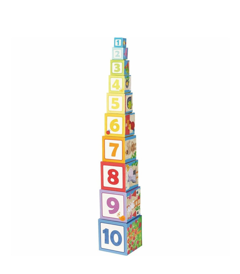 Rapunzel Stacking Cubes