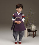 Young boy wearing a royal purple hanbok