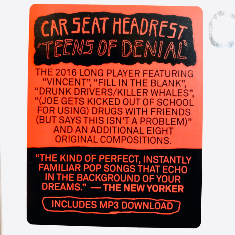 Car Seat Head Rest - Teens Of Denial. LP