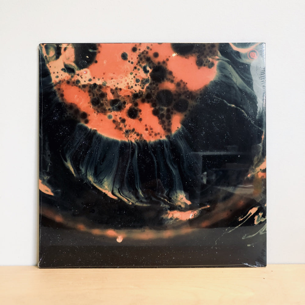 The Comet Is Coming - Death To The Planet. LP
