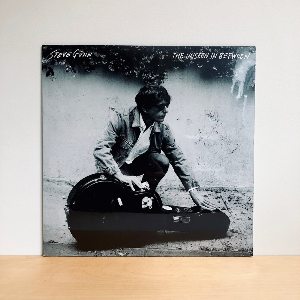 Steve Gunn - The Unseen In Between. LP
