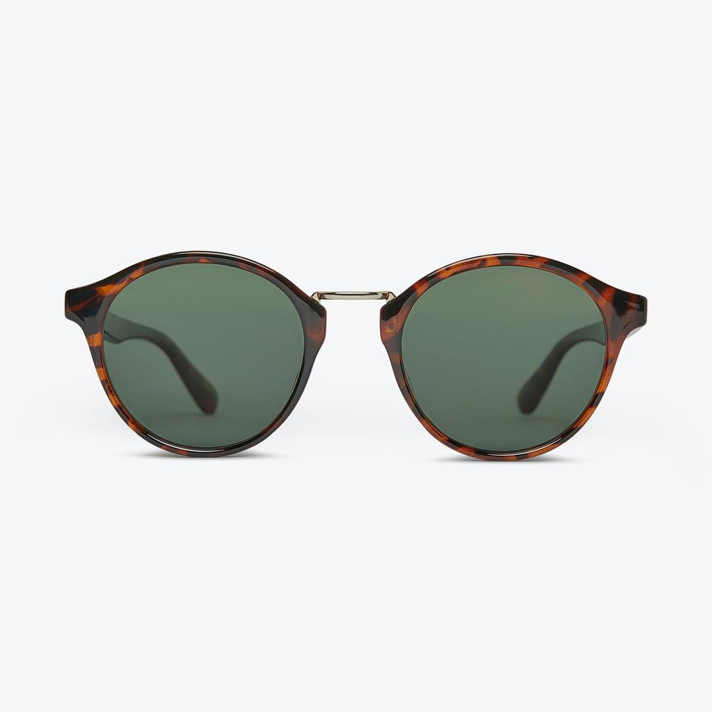 Local Supply - LAX - POLARIZED in Polished Tort w/ Dark Green Lens