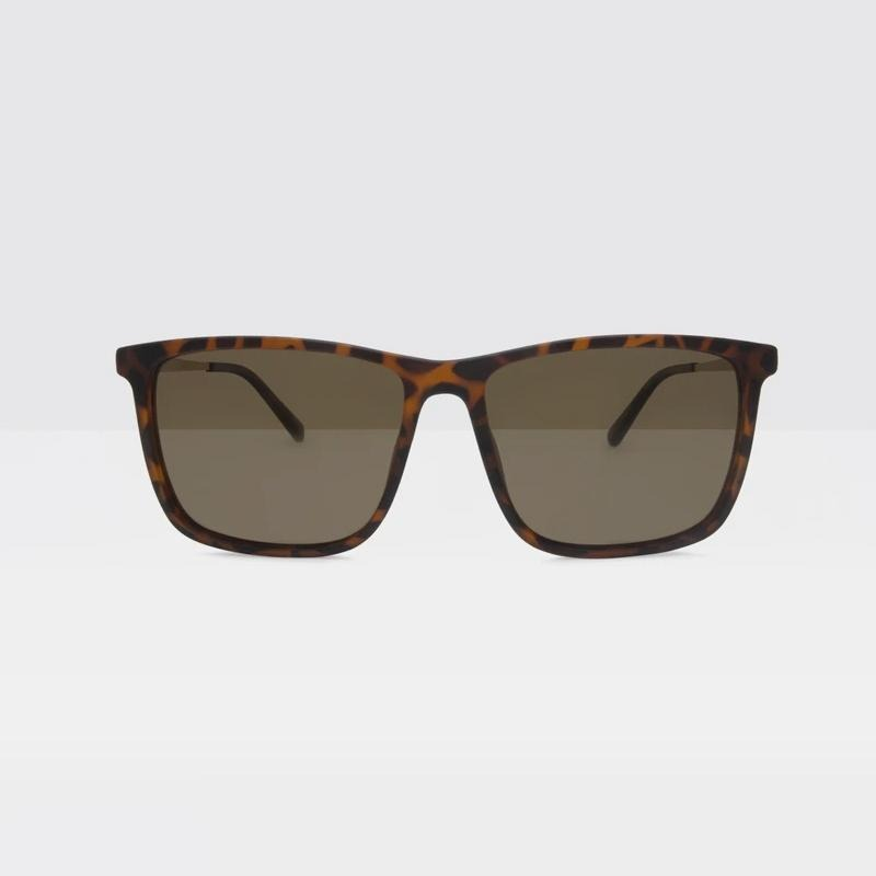 Local Supply - District Sunglasses in TLM3