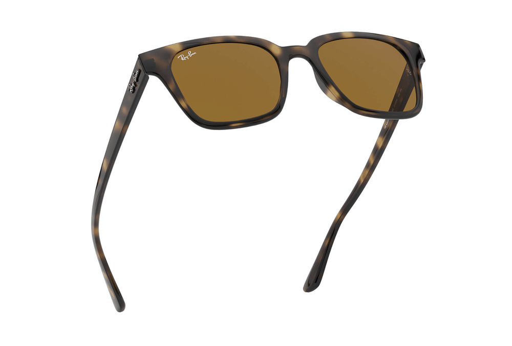 Ray-Ban - Large Square Acetate in Havana with Brown Lens