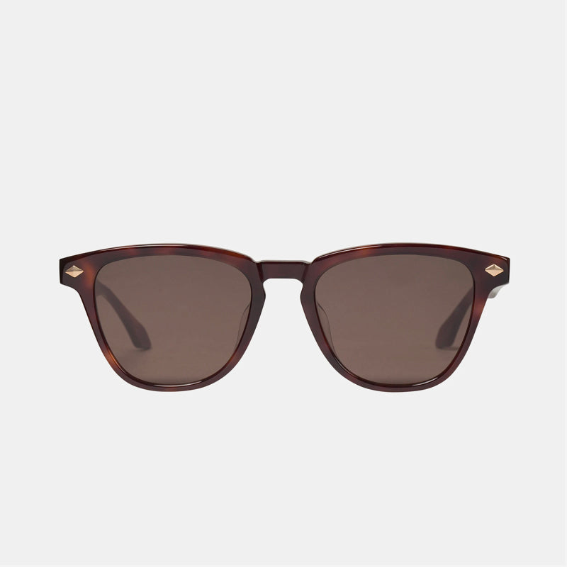 Valley - Tempest Sunglasses in Timeless Tort / Matte Gold Trim / Brown Lens