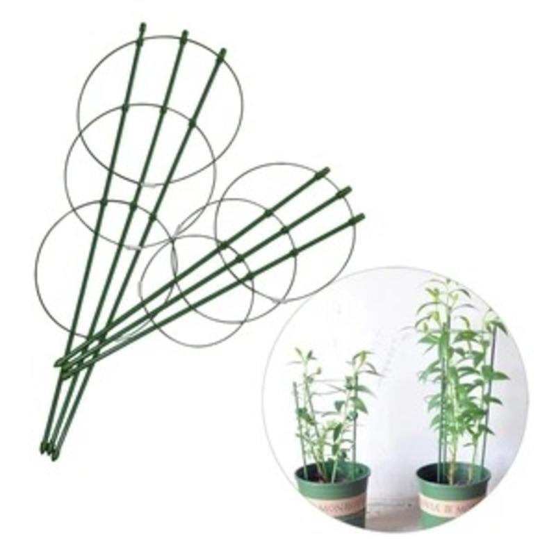 Plant iron ring flower pillar climbing vine flower stand