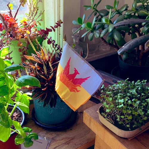 Flags don't just need to be places in pen holders. They can go in pots with plants, flag holders and more.