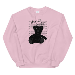 Winter Teddy Color Guard Unisex Sweatshirt-Marching Arts Merchandise-Light Pink-S-Marching Arts Merchandise
