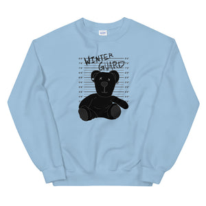 Winter Teddy Color Guard Unisex Sweatshirt-Marching Arts Merchandise-Light Blue-S-Marching Arts Merchandise