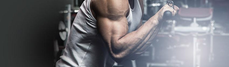 Loading Your Guns part two: Optimizing Your Tricep workouts