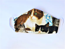 Load image into Gallery viewer, Kitty Cats Mask