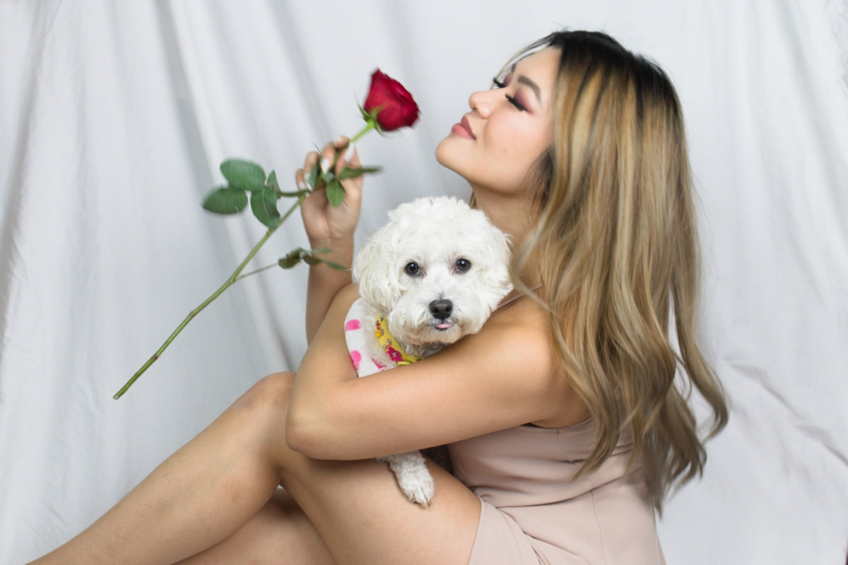 happy portrait of woman with red rose holding white maltese poodle dog