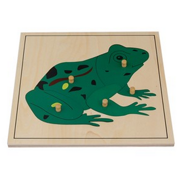 *Frog Puzzle