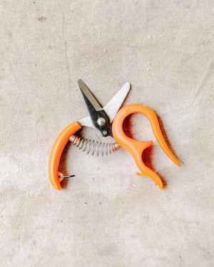 Harvest Scissors w/ Straight Handle, Tool Delivery, The Unlikely Florist