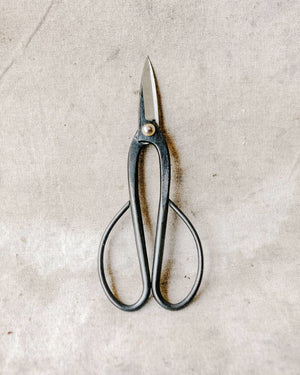 Sakurahamon Ashinaga Shears, Tool Delivery, The Unlikely Florist
