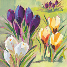 Load image into Gallery viewer, Crocus Musee Floral